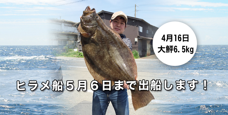 hirame20150420